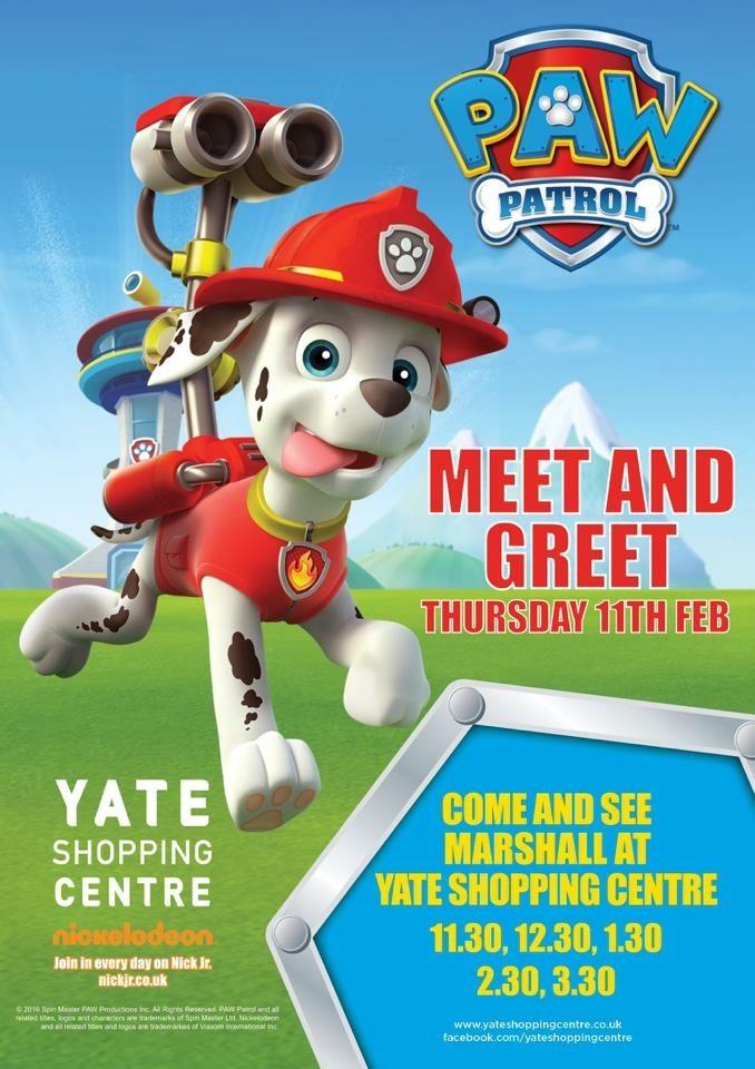 Meet and greet paw patrol marshall 11th february 2016 m4hsunfo
